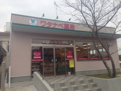ワタナベ薬局高田店