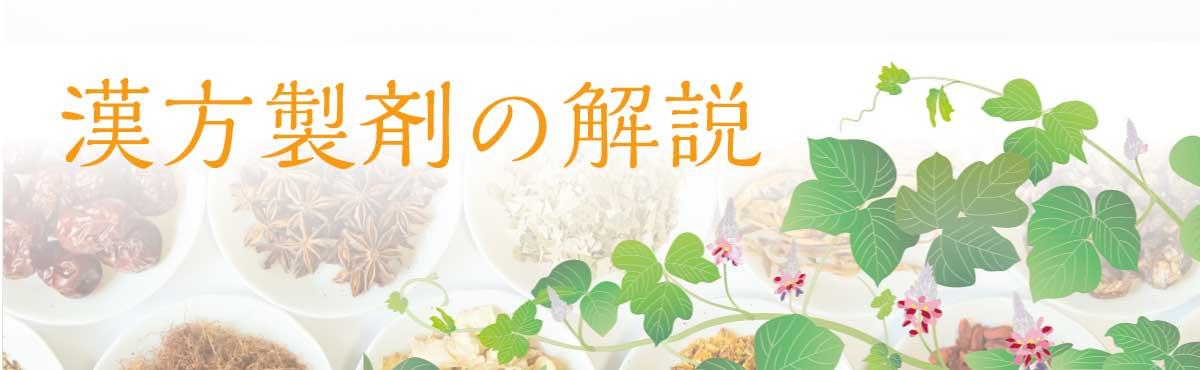 漢方製剤の解説の画像